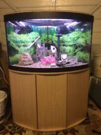 corner fish tank fluval