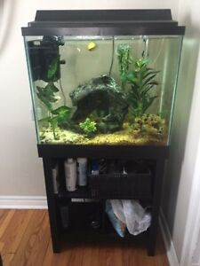 25 gallon fish tank and stand