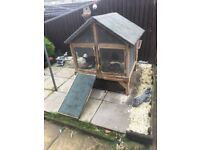 Bunny family for sale with custom built hutch, 2 female baby bunnies 11 wks need a new home