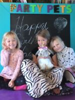 Birthday Parties.  Party Pets NB