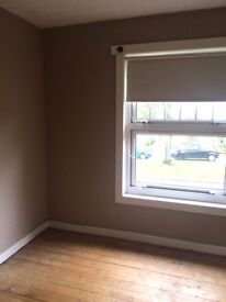 Painter and decorator, bearsden and surrounding Area