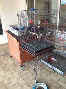 Large bird cage  100$ .12 mo old Willagee Melville Area Preview