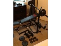 Weight bench, free weights & pull up bar
