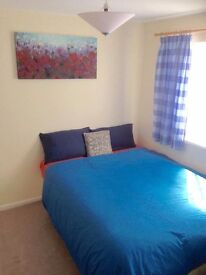 NEAR THE HOSPITAL AND CASTLE LINE Large double room in a beautiful garden house