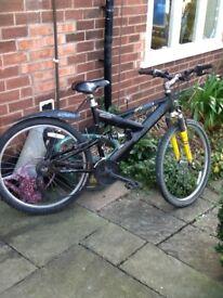 Raliegh bandicoot bike