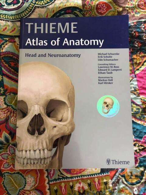 Thieme Atlas Of Anatomy Head And Neuroanatomy Textbook
