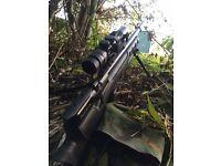 Airgun pest control