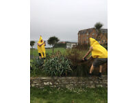 11 Fancy dress banana costumes, left over from stag-do