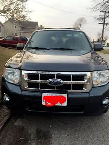 2008 Ford Escape (Must Go)
