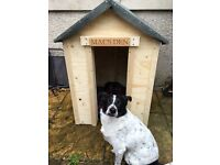 ***FREE*** - - DOG KENNEL. NAME NOT INCLUDED.(OR DOG) HOMEMADE SOLID KENNEL