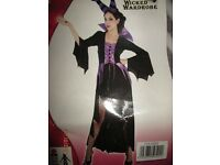 MALEFICENT STYLE EVIL QUEEN/WITCH OUTFIT SIZE 16/18 GREAT FOR PARTY OR HEN DO