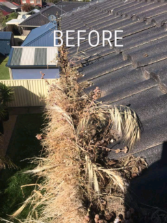 Gutters vacuum cleaning