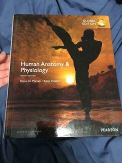 Human anatomy & physiology textbook