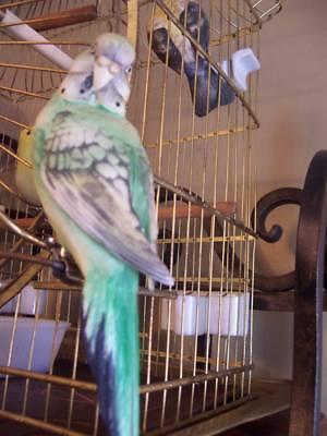 VTG Parakeet Clip Bird Budgie Antique Bird Cage Porcelain Figure Tree Ornament