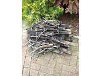 Free Pile of Firewood