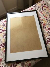 IKEA Ribba Picture Frame - Large