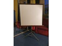Fold away projector screen
