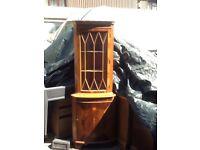 Glass Fronted Corner Unit