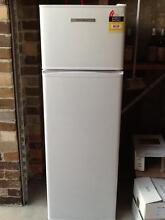 Fisher & paykel fridge Tempe Marrickville Area Preview