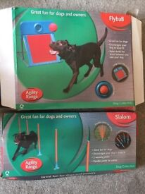 Set of 2 Dog Agility Equipment Pieces