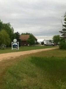 Cattle ranch in central Manitoba