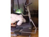 Horizon Fitness exercise step machine