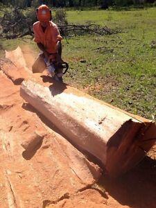 Chainsaw Man- Elwyn Stephan Jimboomba Logan Area Preview