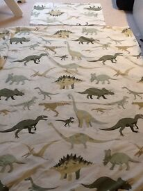 Children's Dinosaur bedding , rug , light and marching accessories