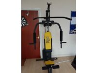 Everlast EV500 Multi Gym With 50kgs Weight Stack