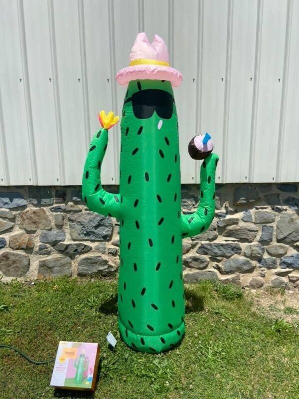 New Sun Squad 6' indoor outdoor LED Self Inflatable Cactus Fun Summer Decor