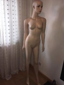 Mannequin Lady with wigs for Shop display