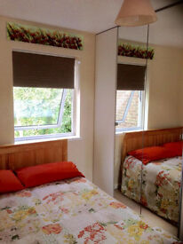 Beautiful large double room garden house near: JP Morgan- Hospital- Littledown Centre