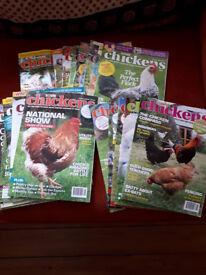 chicken magazines