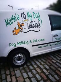 dog walking cumbernauld and sourounding areas disclosure scotland first aider fully insured