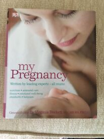 My Pregnancy - nutrition antenatal care, fitness emotional well-being, childbirth and baby care.