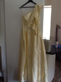 Ladies long satin dress