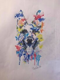 Water colour pencil Drawings of your pets (Any animal)