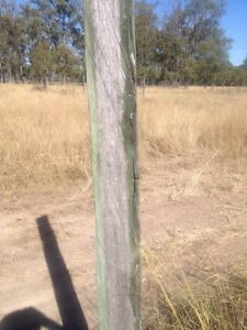 Treated hardwood fence posts Leyburn Southern Downs Preview