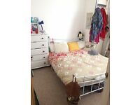 Double room in lovely, cosy flat in Brighton