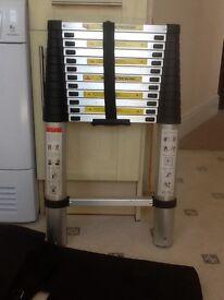 12 step telescopic ladder