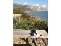 Purbeck Home Tuition Swanage