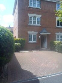 room to rent (gillingham) working person only