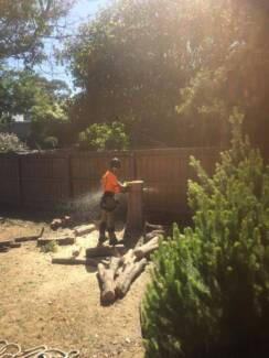 Forest Stump Tree Services