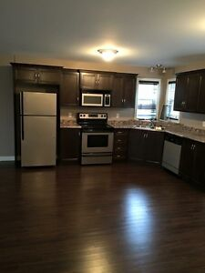 One bedroom above ground basement apartment in Paradise St. John's Newfoundland image 7