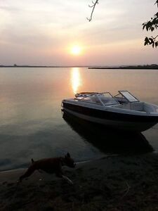 2008 bayliner discovery 195 low hours