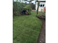 Gardens, Decking and Landscaping.