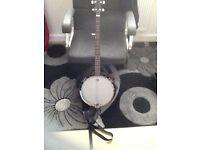 Blueridge banjo