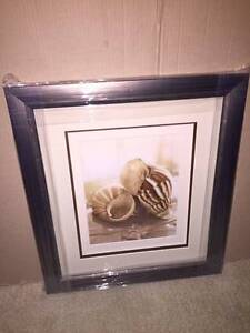 Shell Picture Frames Baldivis Rockingham Area Preview