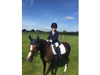 12'2 Welsh section B lead rein or fantastic second pony