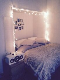 Spacious double bedroom in a large flat, Nottingham City Centre. Cheap rent.